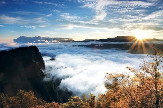 hình ảnh đồi núi alishan
