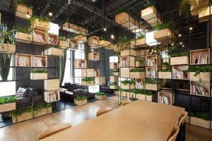 Bí Quyết Mở Quán Cafe Đẹp, Thu Hút Khách Với 100 Triệu