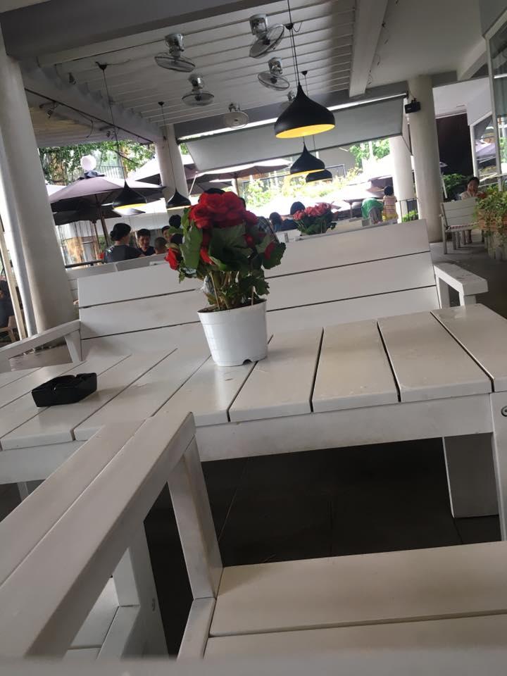 quán cafe du miên